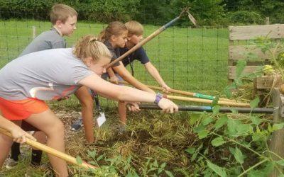 SAP America Hosts Garden Olympics