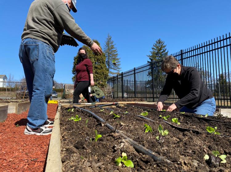 Garden Tips: April