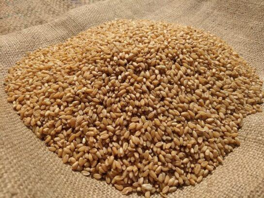 grain stability calculation curve