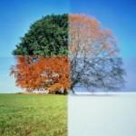 Changing Seasons, Changing Lives