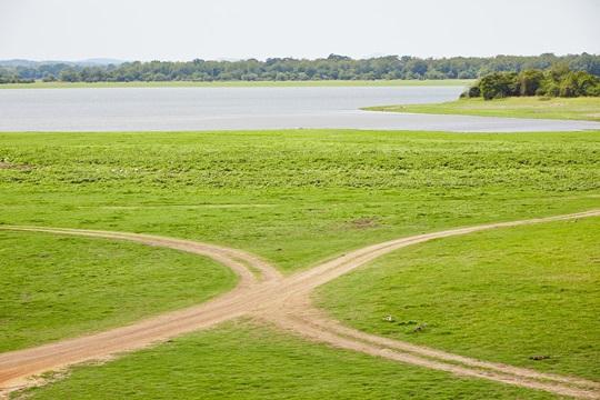 Dirt road in nature in Sri Lanka