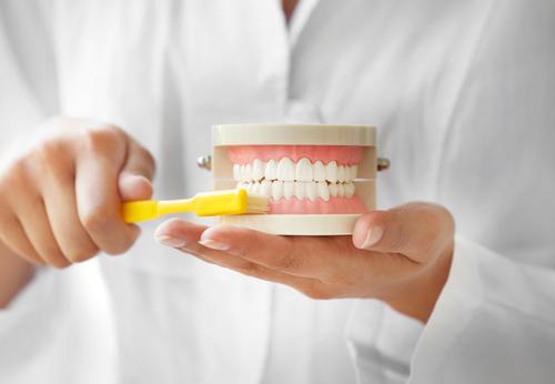 dentist modeling how to brush teeth