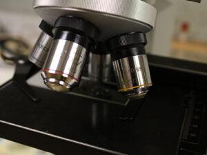 Diagnostics & Testing