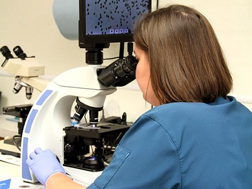 In-House Diagnostics