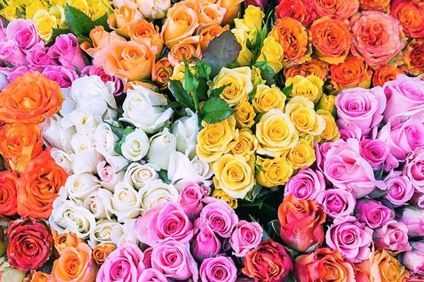 6 ดอกไม้กับความหมายดี ๆที่เหมาะกับวาเลนไทน์ นิยามความรัก ทริคความรัก