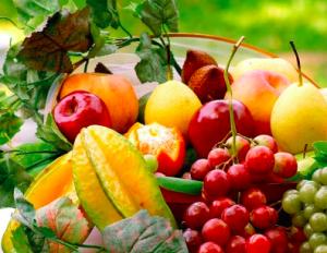 The Garden Of Abundance