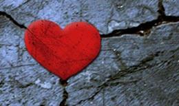Undivided Love