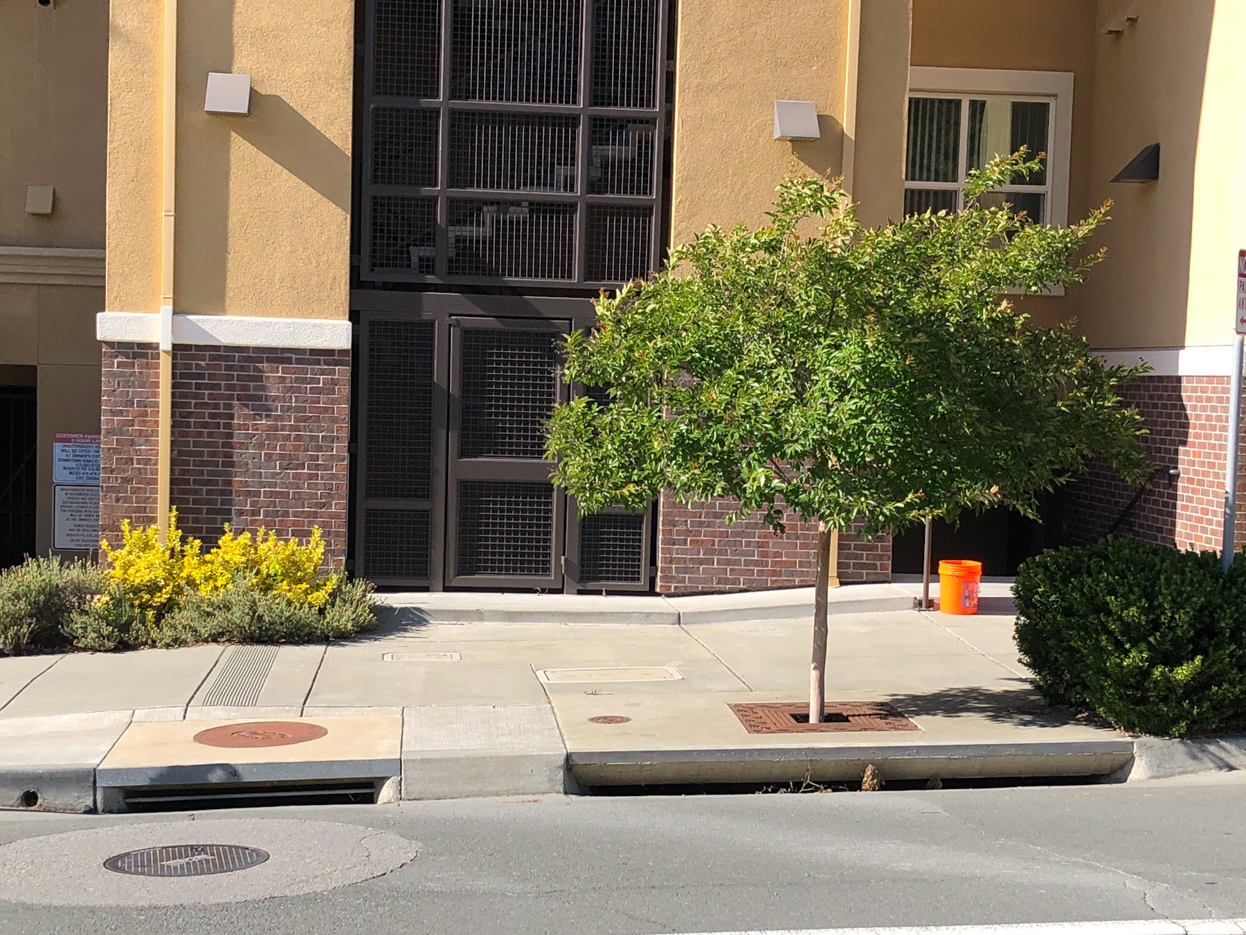 tree box stormwater treatment
