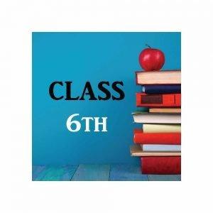 Saupin's School Class 6 Book Set