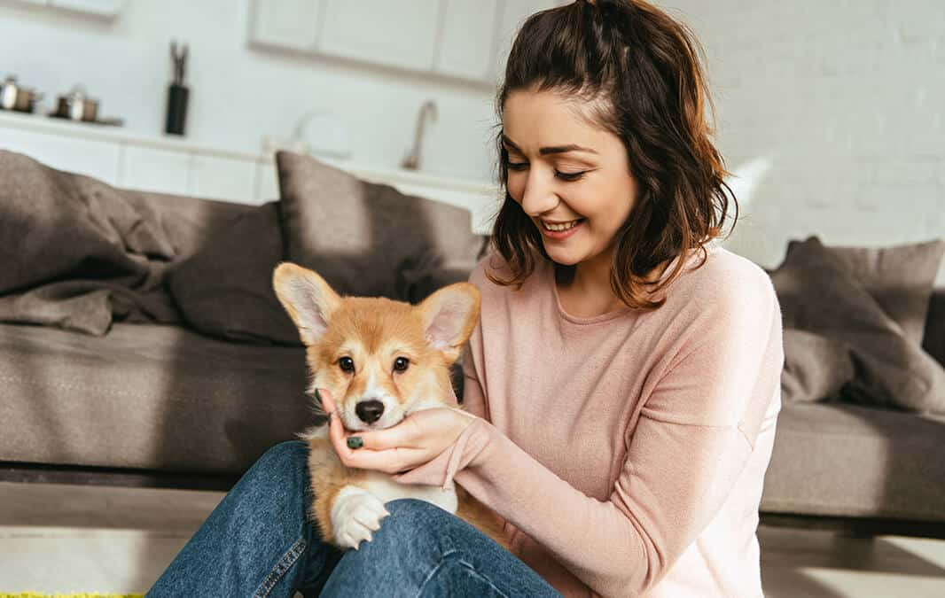 Woman holding a dog in her lap with couch in the background