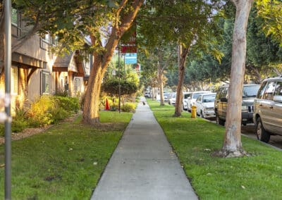 Walk ways and trees