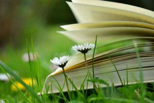 El libro de la alegría