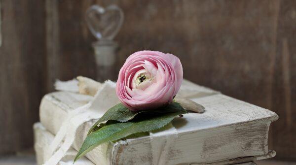 Libro: La Maestría del Amor