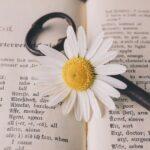 """El libro del mes: """"untamed"""""""