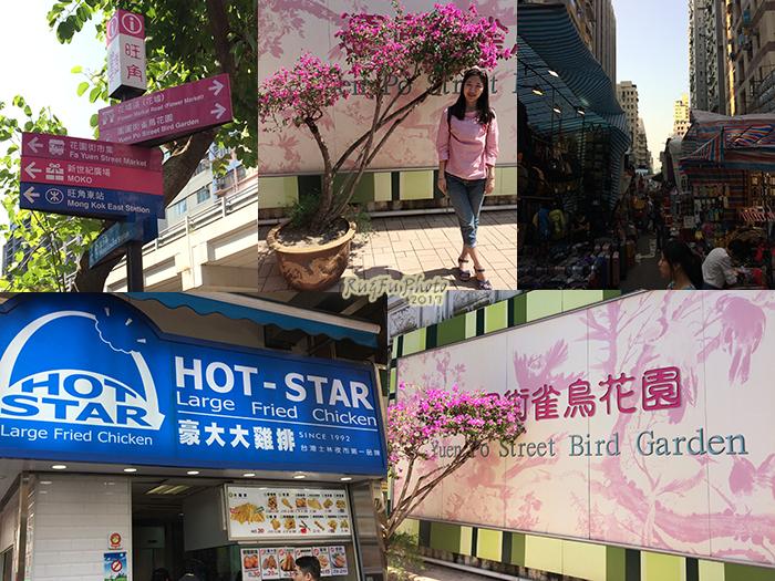 香港圖片-雀鳥花園