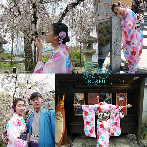 日本關西圖片-櫻花