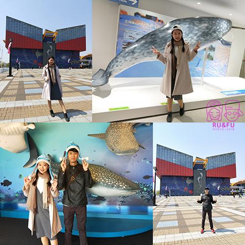 日本關西圖片-海遊館