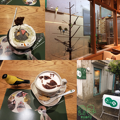 日本關西圖片-鳥餐廳