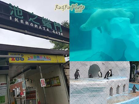 日本東京圖片-上野動物園