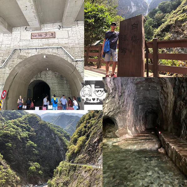 環島圖片-白楊步道