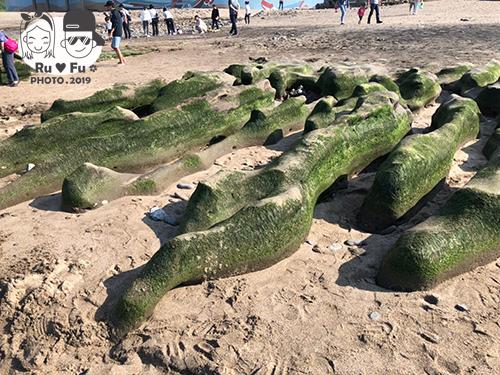 環島圖片-老梅綠石槽