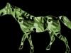 mamongreen-camo-horse2012-03-12-at-2-26