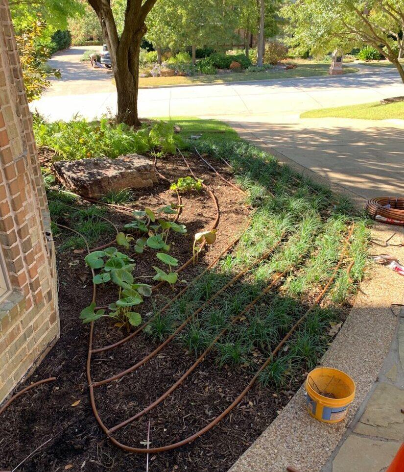 Drip Irrigation Flowerbeds