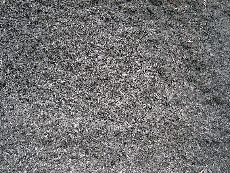 Black-Mulch