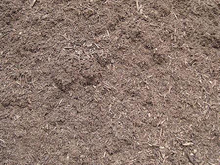 Pine-Mulch