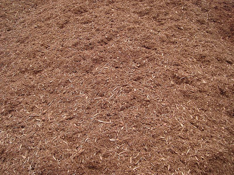 Pure-Hemlock-Mulch