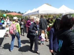 Hillsdale Farmers Market Fans