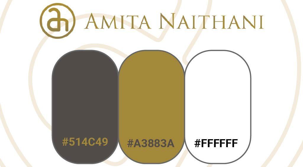Amita Naithani Style Guide