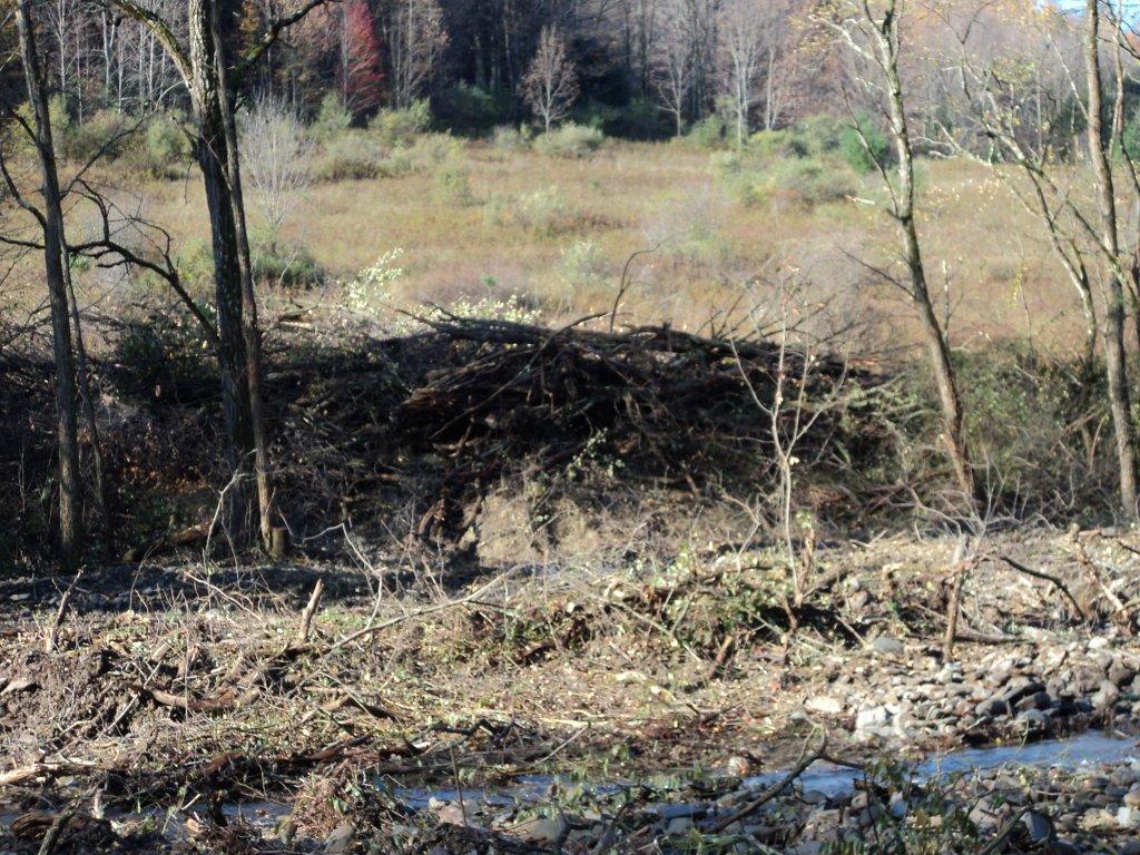 Resore a Flooded Creek