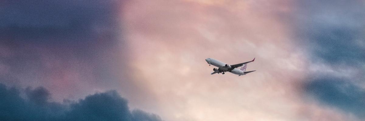 Domestic Travel Bans Loom