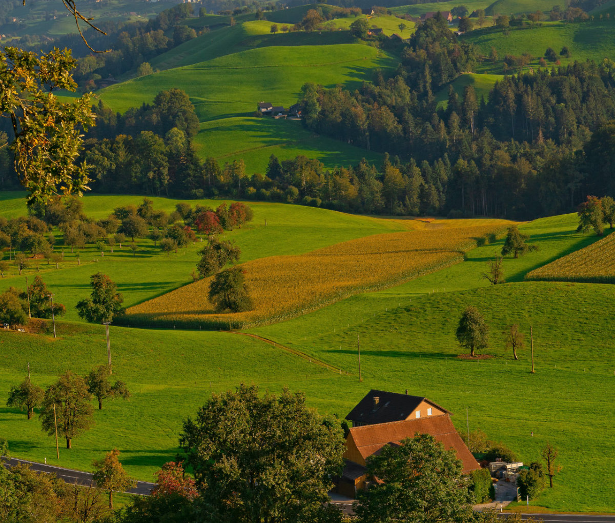 A farm in a valley