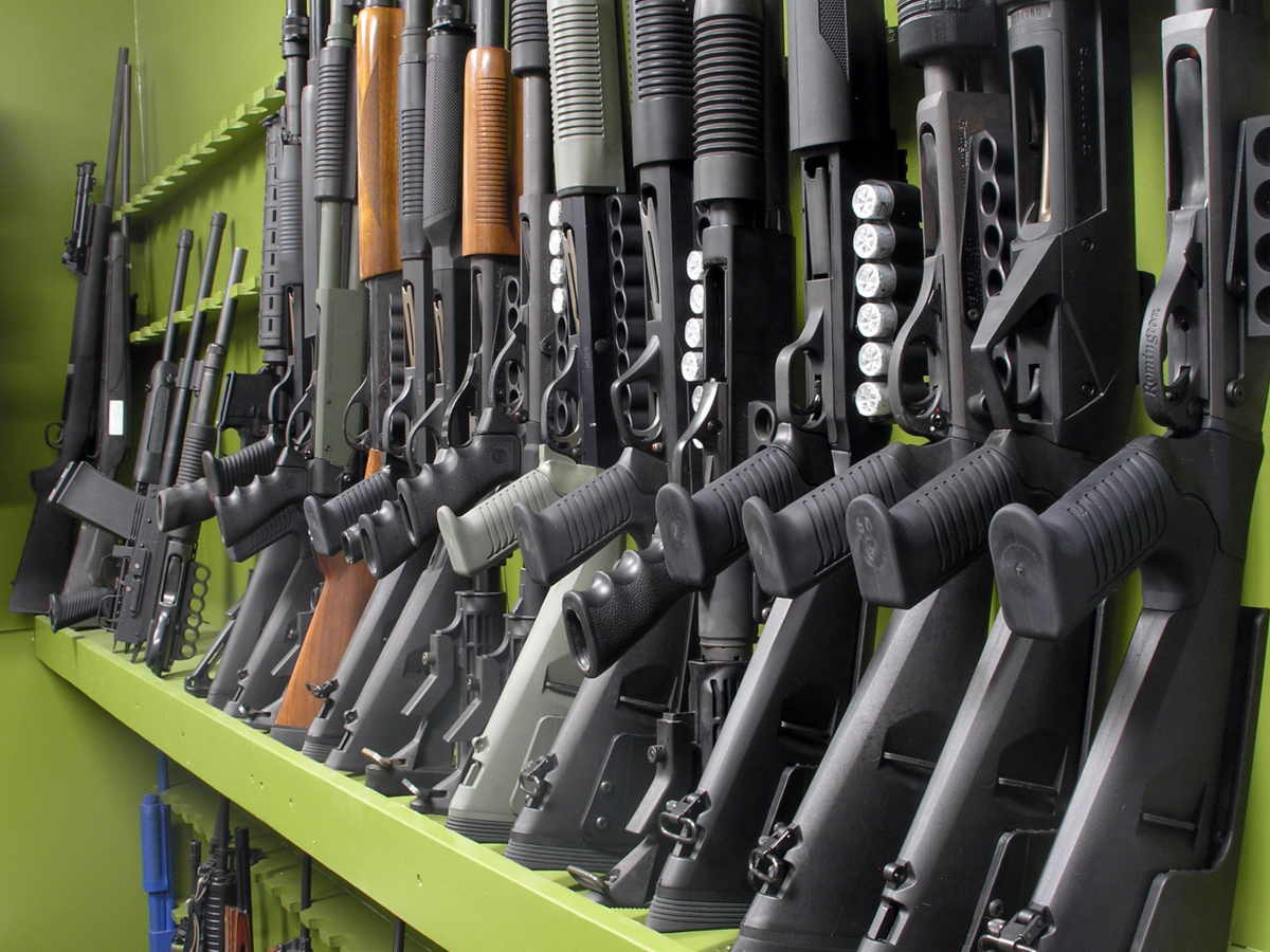 A row of shotguns in a store