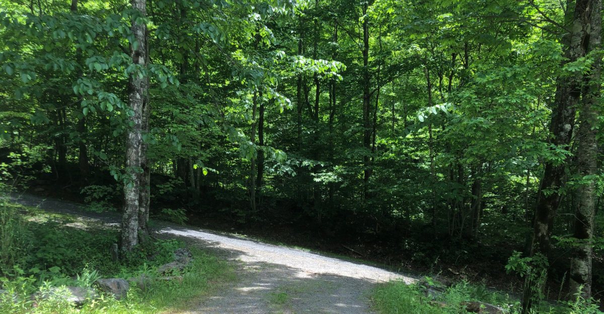 A steep uphill dirt road