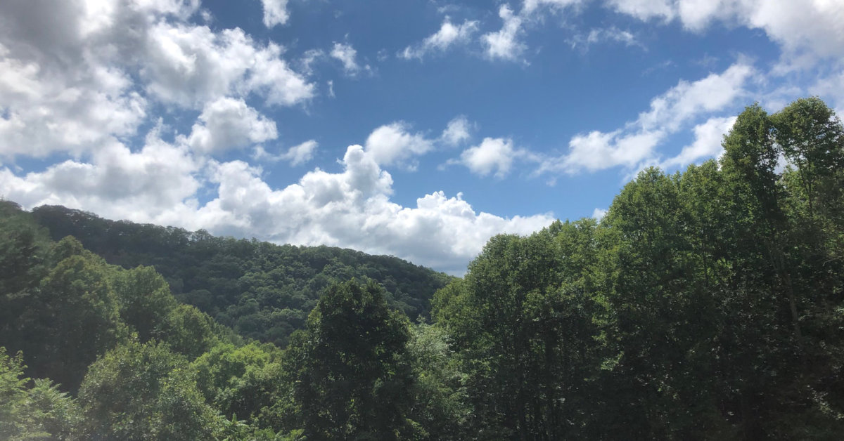 The view from our deck