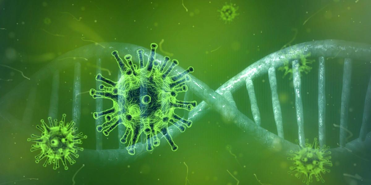Coronavirus and DNA strand