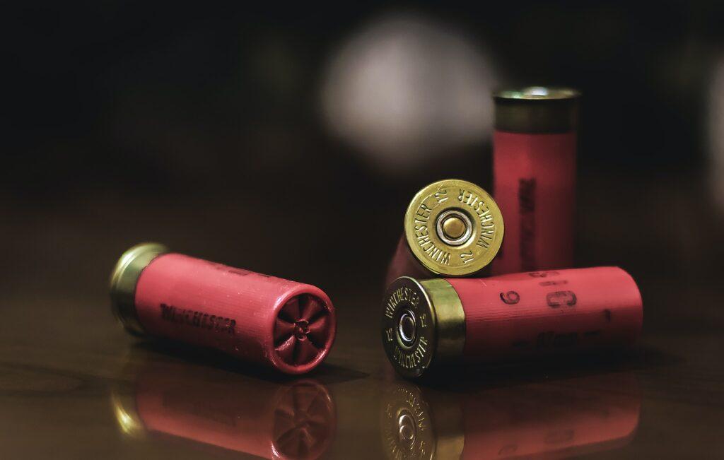 Shotgun shells.  Photo by David Leveque.