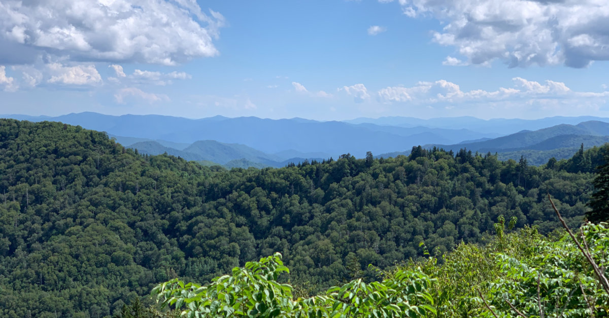 A view of the Appalachian Mountains from Tennessee. Photo by Joshua williams on Unsplash