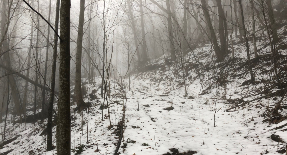 The track up the mountain in the snow and fog