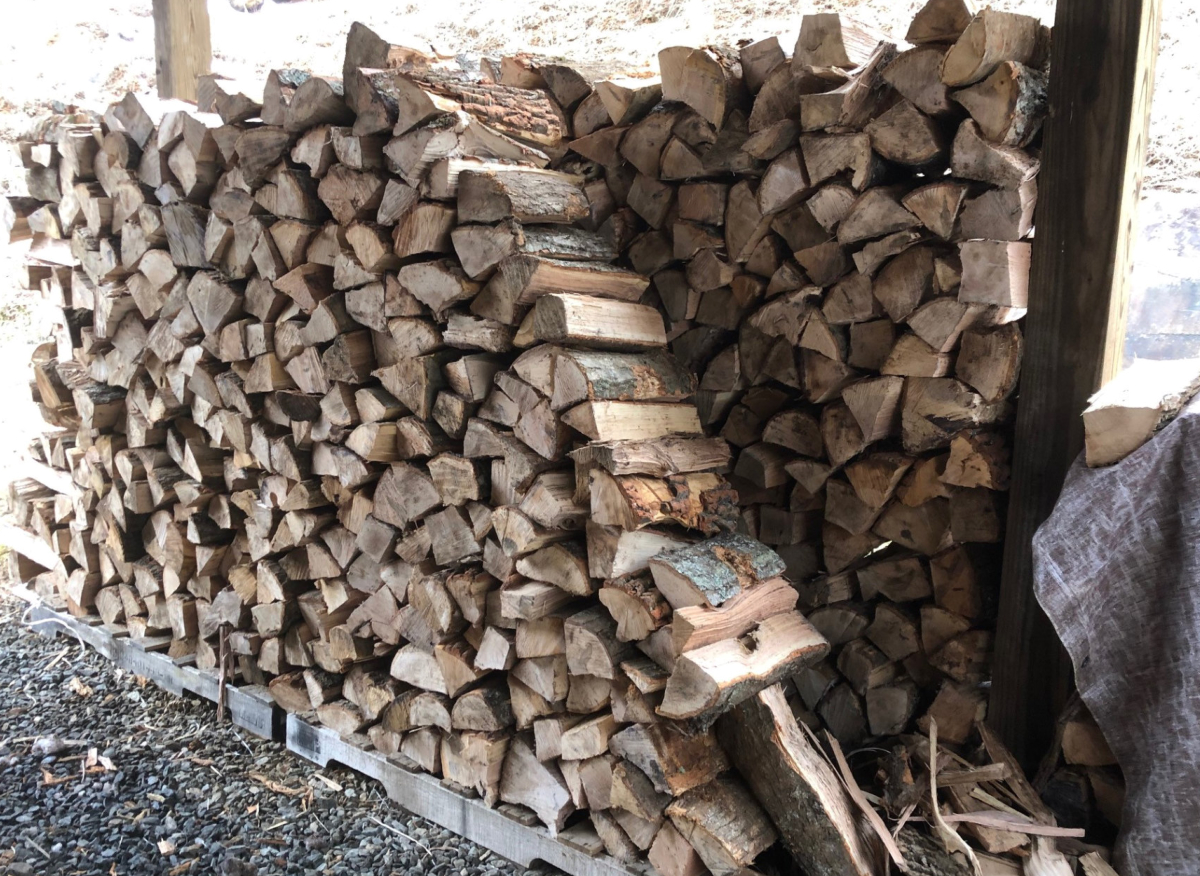 Roughly a cord of firewood stacked to dry