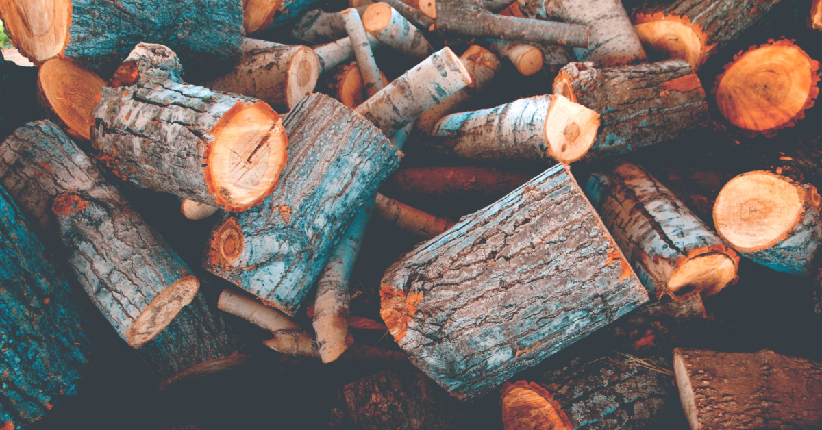 A pile of freshly cut fire wood. Photo by Chandler Cruttenden on Unsplash.