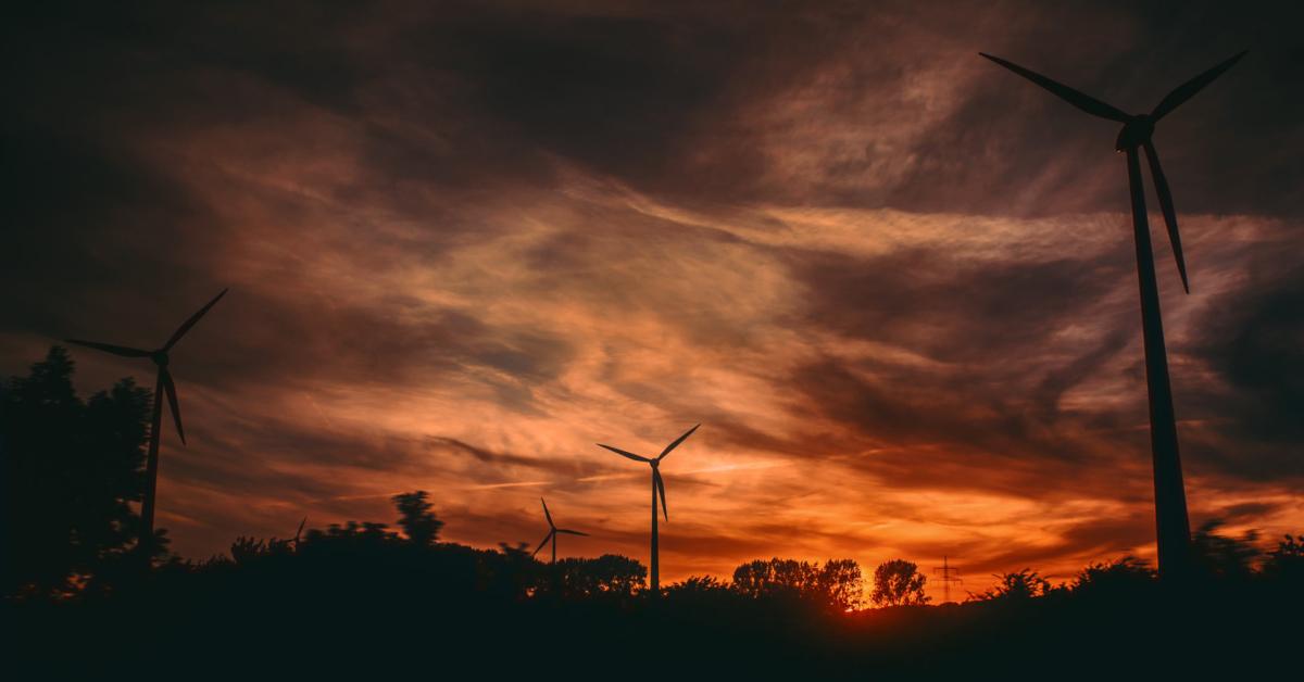 Windmills generating electricity. Photo by Irina Iriser on Unsplash.