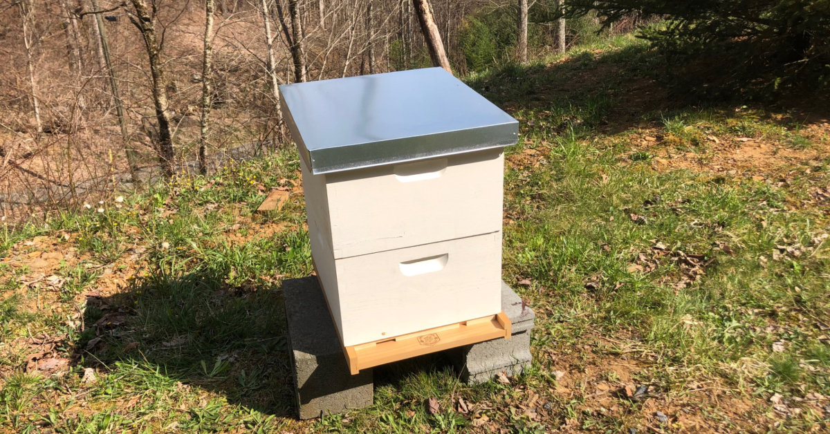 A new bee hive with two deep hive bodies and a telescoping lid.