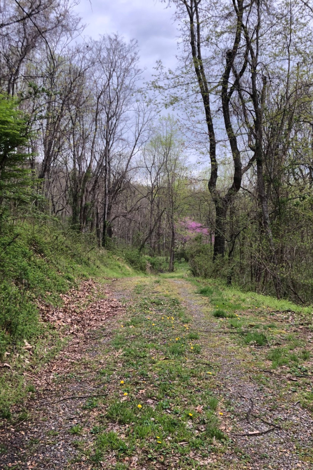 Prepper Diary April 18: Spring Means We Get Busy
