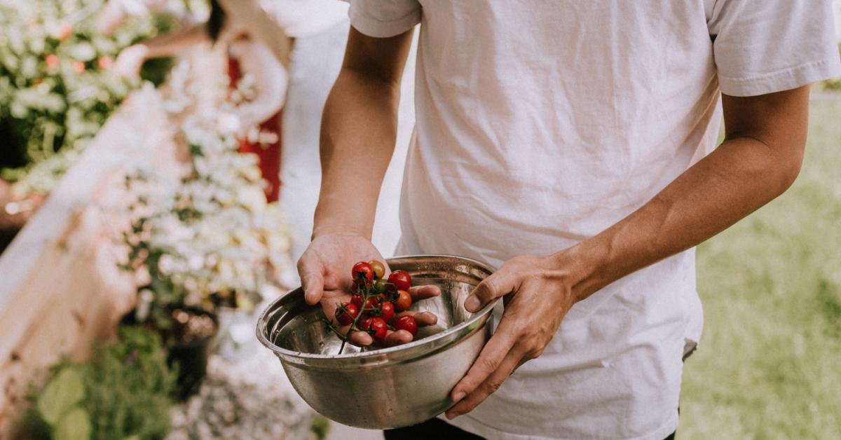 Picking ripe vegetables. Photo by Priscilla Du Preez on Unsplash.