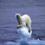 Is global warming our biggest fear?