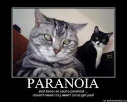 The funny thing about paranoia!